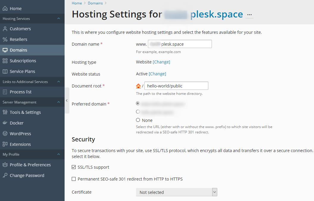 Hosting settings for Node.Js app - Plesk