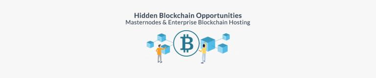 Hidden Blockchain Opportunities - Masternodes and Enterprise Hosting - Plesk