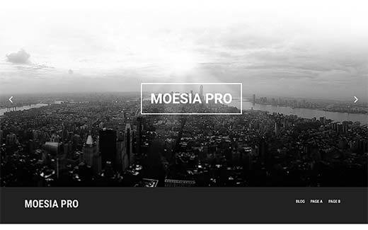 Moesia Pro WordPress theme