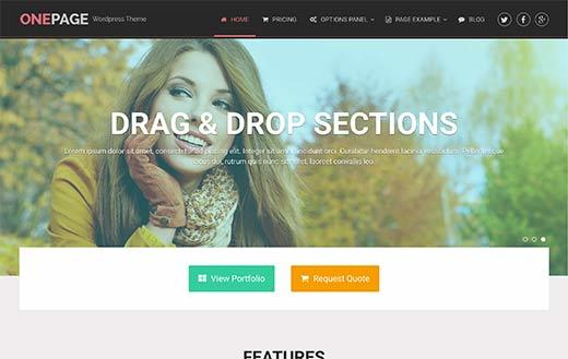 OnePage Responsive WordPress Theme