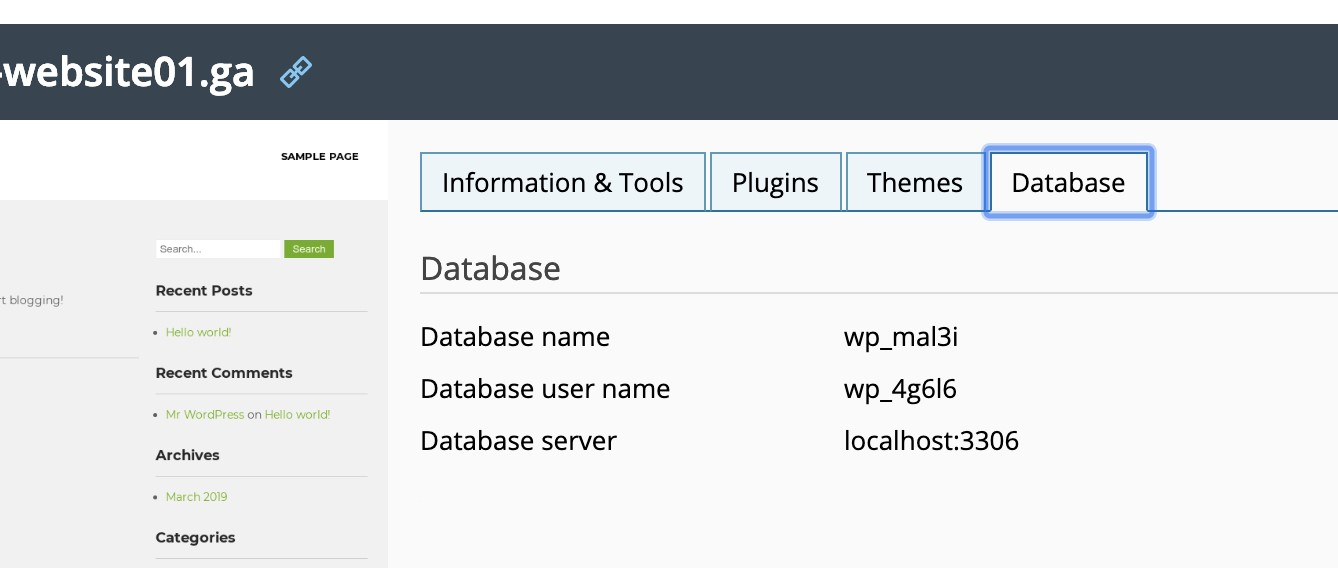 Add database server info to database tab in WPTK 4.0