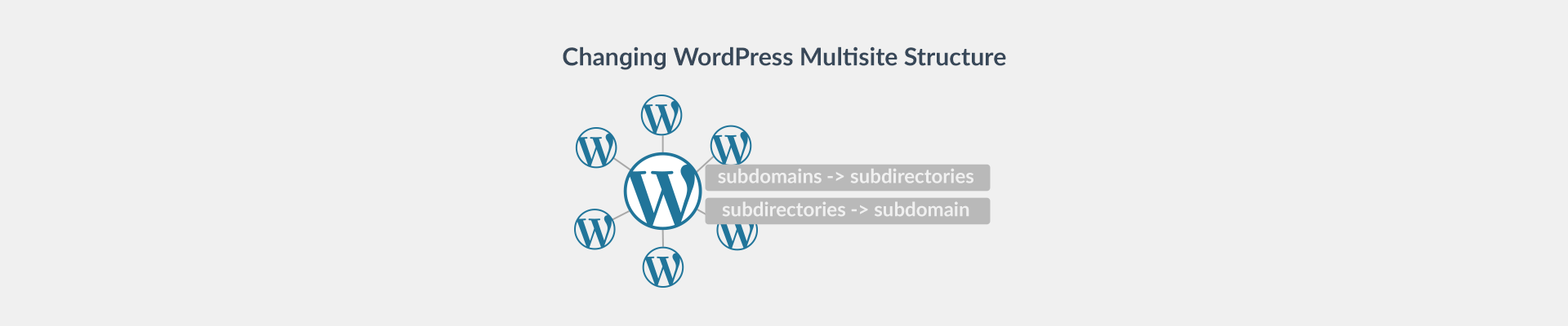 WordPress Multisite Structure Change