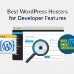Top Hosting Providers for WordPress Developer Features