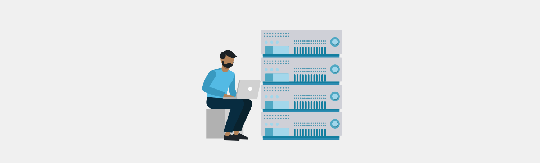 server administration roles - server administrator