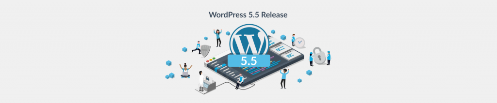 Performance and Security Enhancements in WordPress 5.5 Release - Plesk