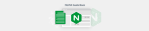 NGINX configuration guide Plesk