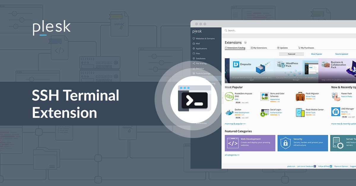 SSH terminal extension Plesk